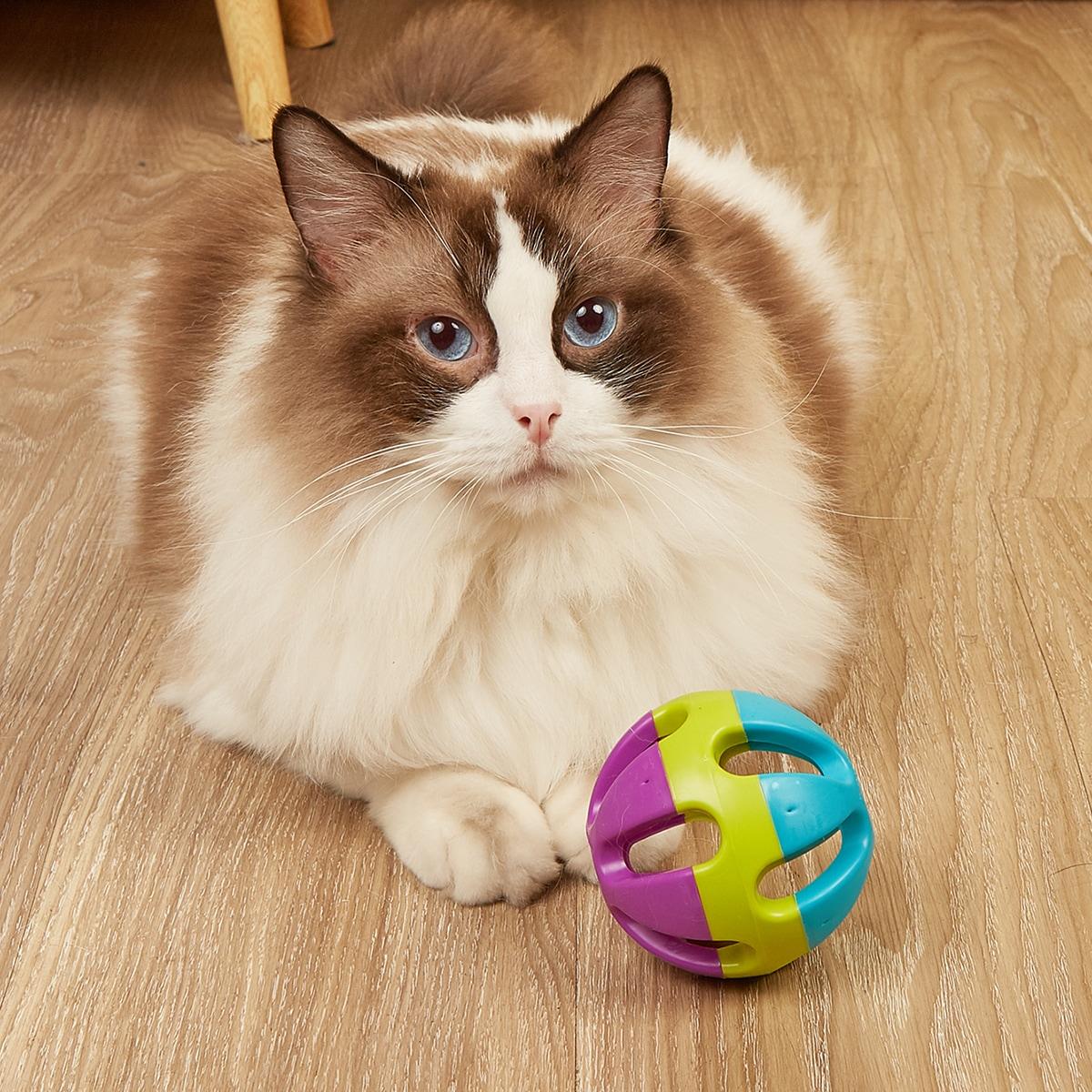 1шт контрастный мяч для домашних животных