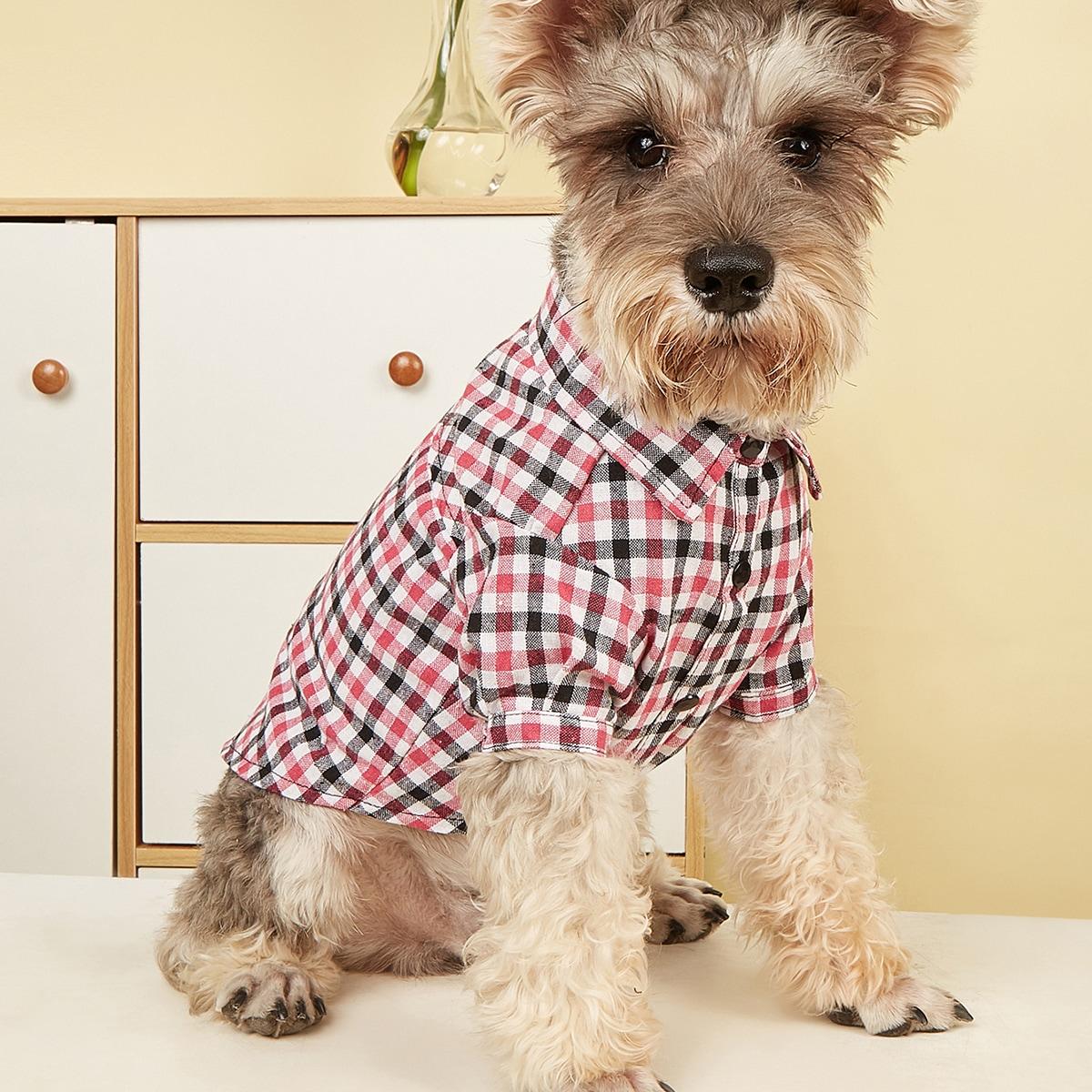 1 Stück Hemd mit Gingham Muster für Haustiere