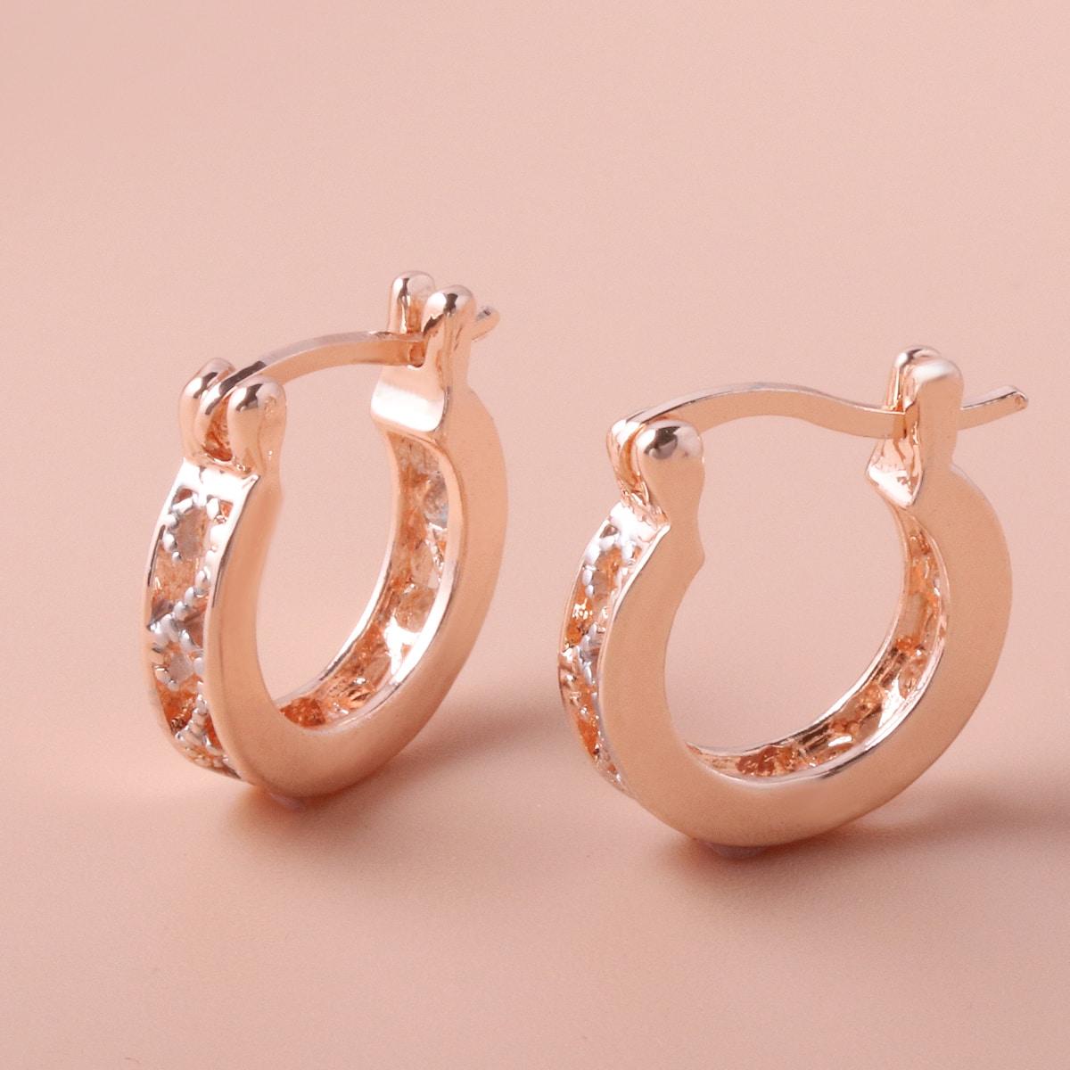 1pair Alloy Earrings
