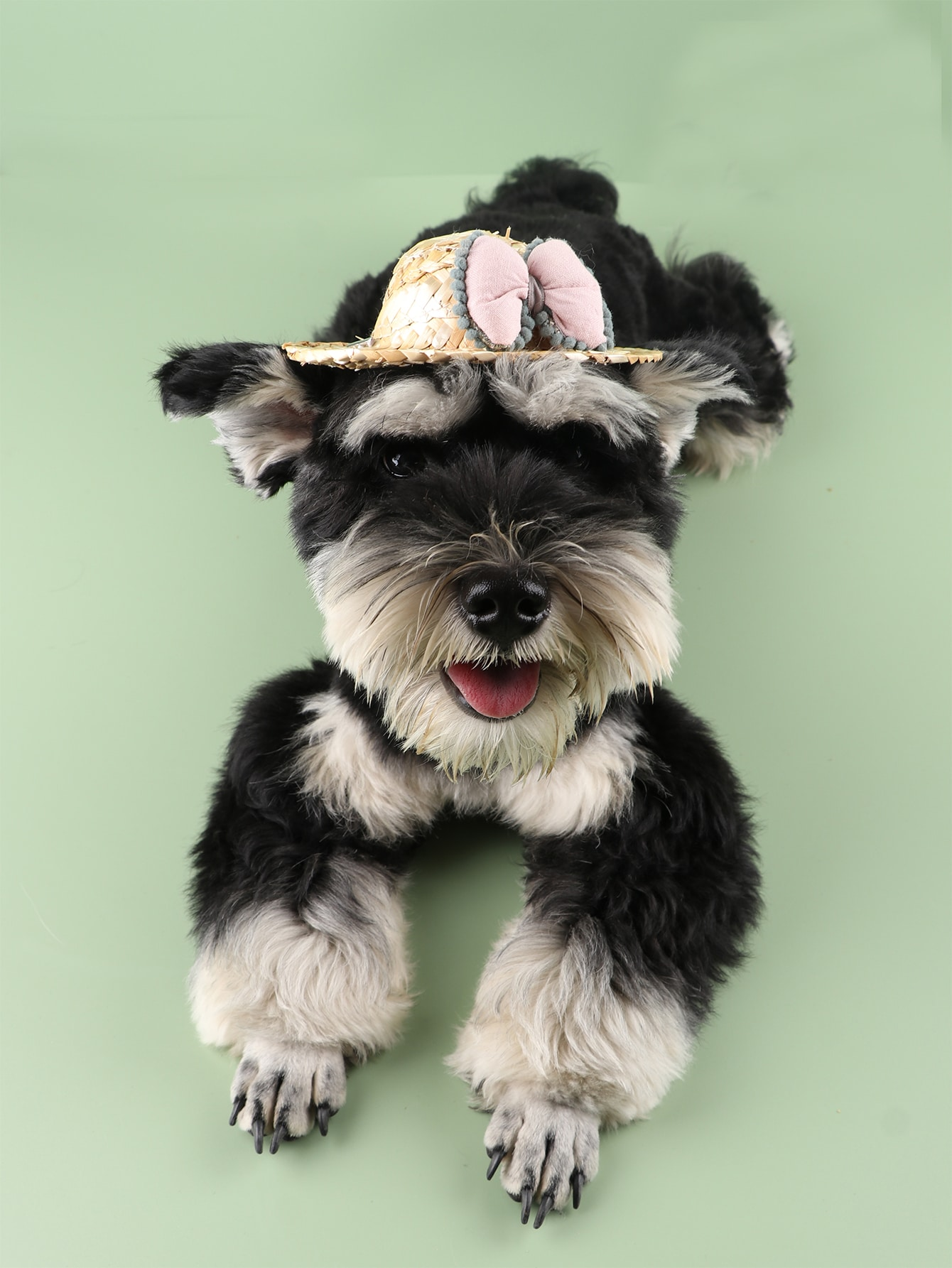 1pc bow decor pet straw hat