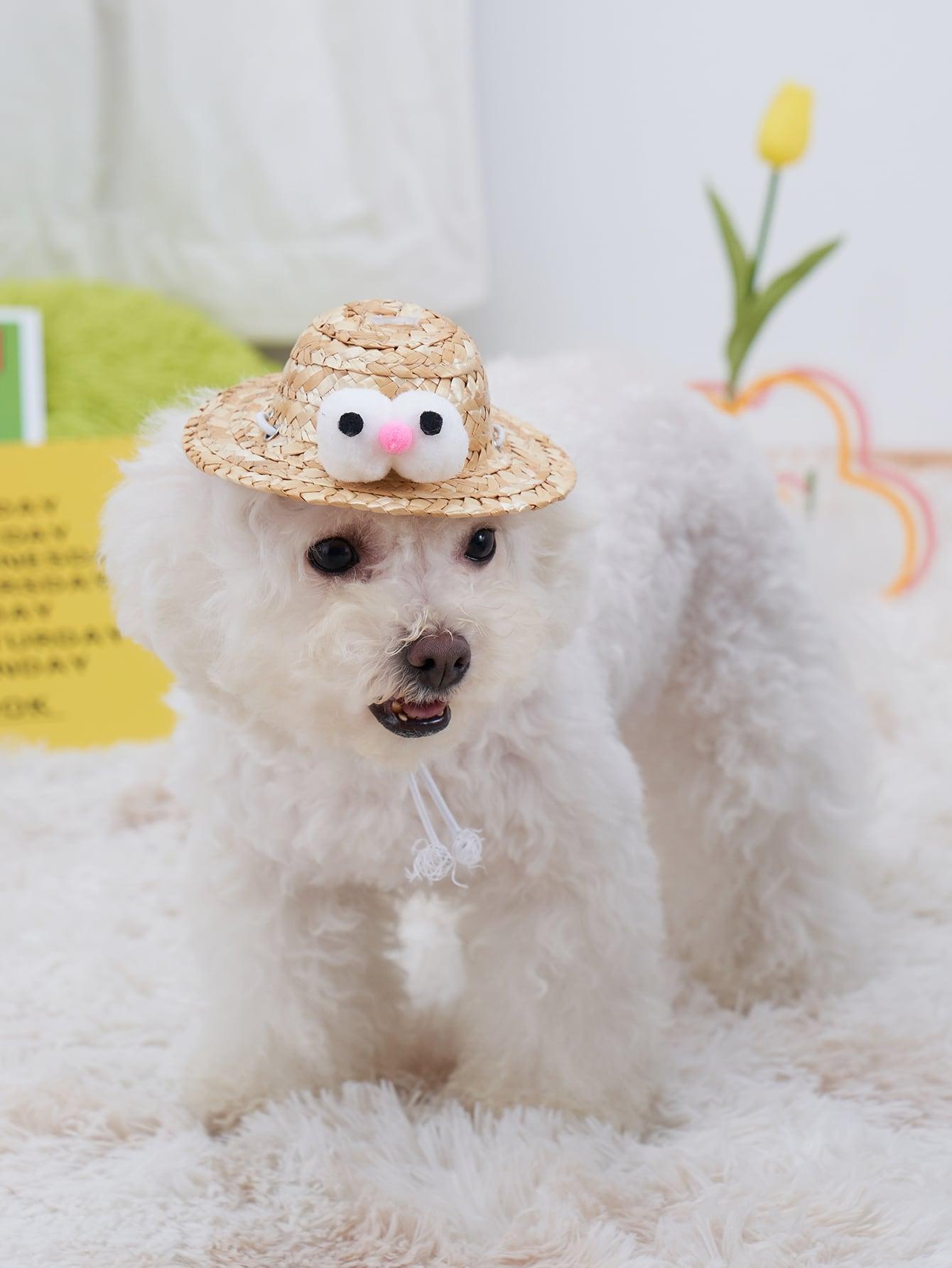 eye decor pet straw hat