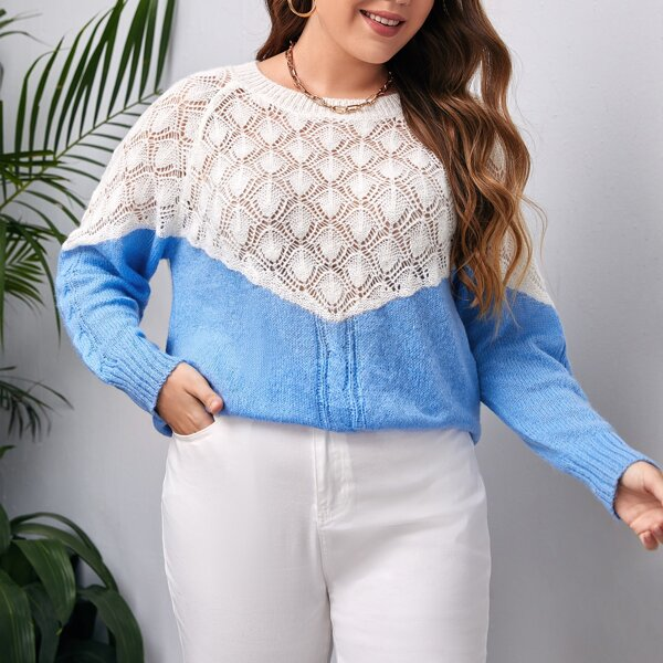 Plus Two Tone Raglan Sleeve Sweater, Blue and white
