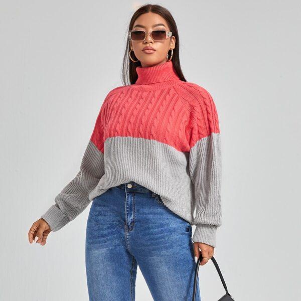 Plus Two Tone Turtle Neck Raglan Sleeve Sweater, Multicolor