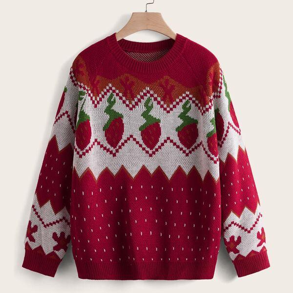 Plus Strawberry & Chevron Pattern Raglan Sleeve Sweater, Multicolor