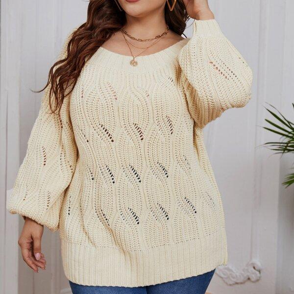 Plus Pointelle Knit Raglan Sleeve Sweater, Apricot