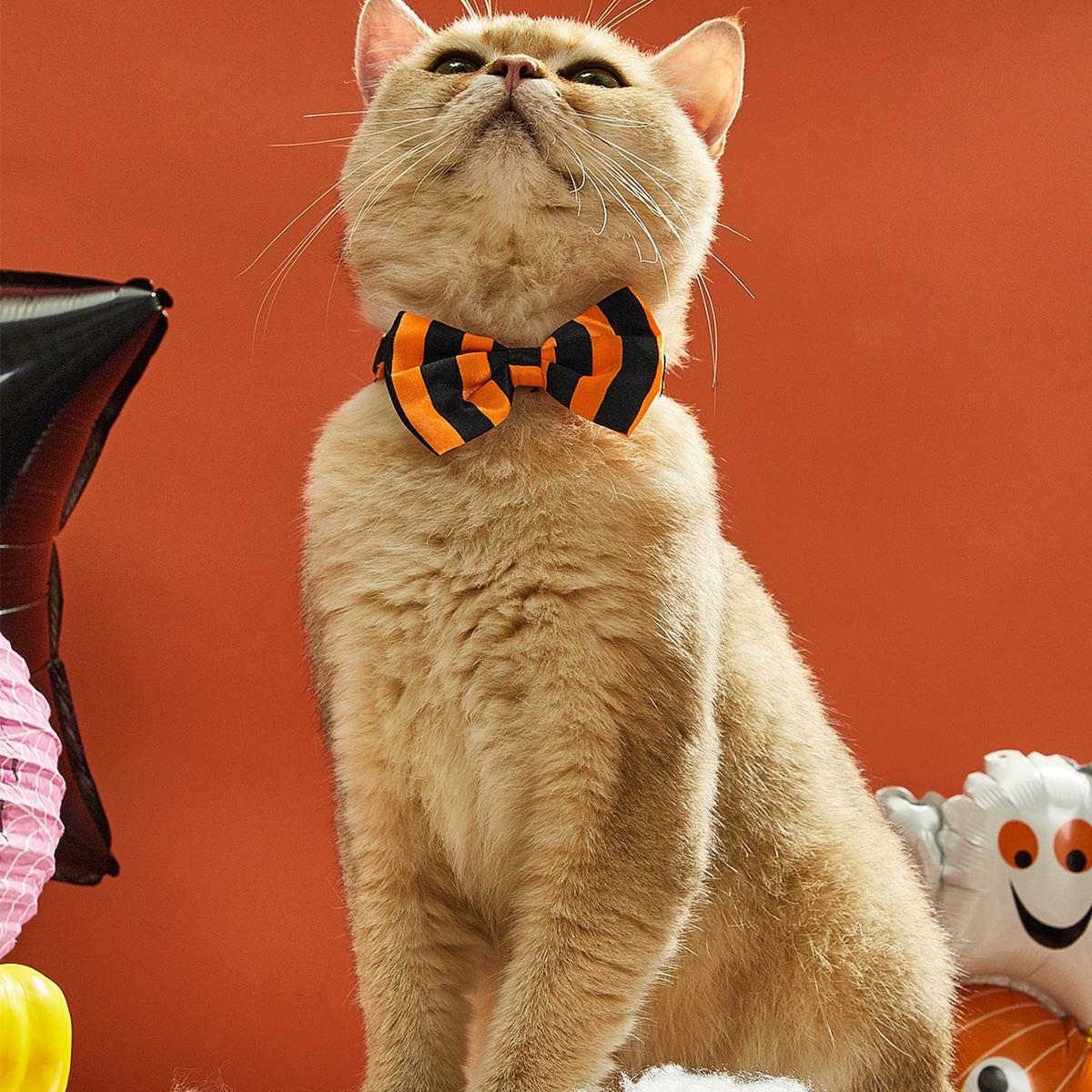 Halloween Striped Pattern Pet Bow