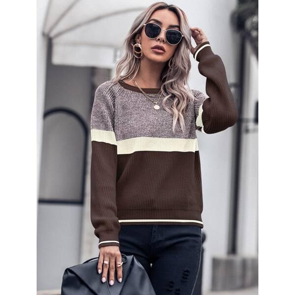 Cut And Sew Raglan Sleeve Sweater, Multicolor
