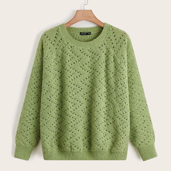 Plus Pointelle Knit Raglan Sleeve Sweater, Green