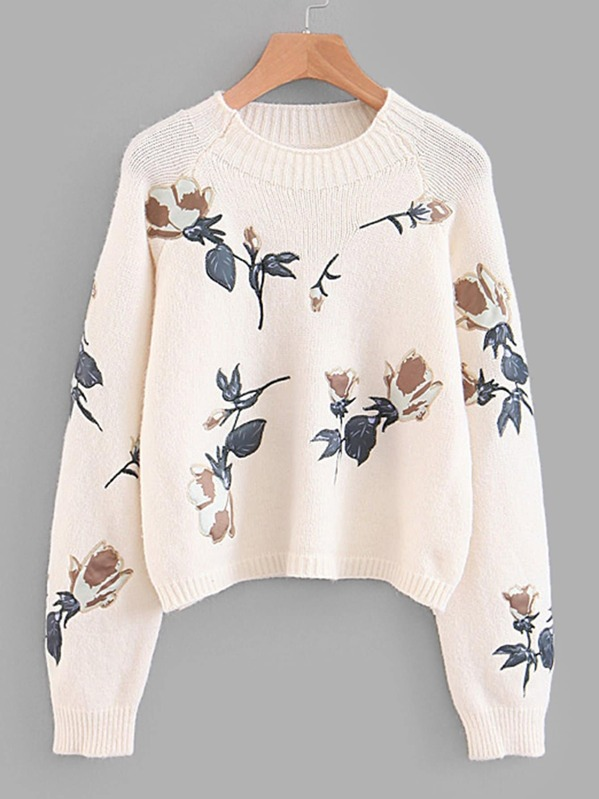 Embroidered Applique Raglan Sleeve Crop Jumper by Sheinside